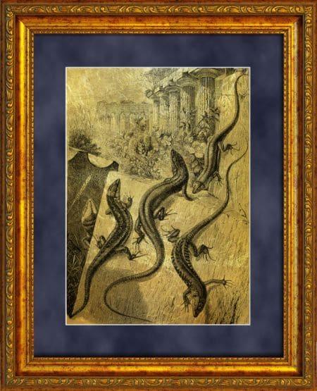 картины рисунки в подарок